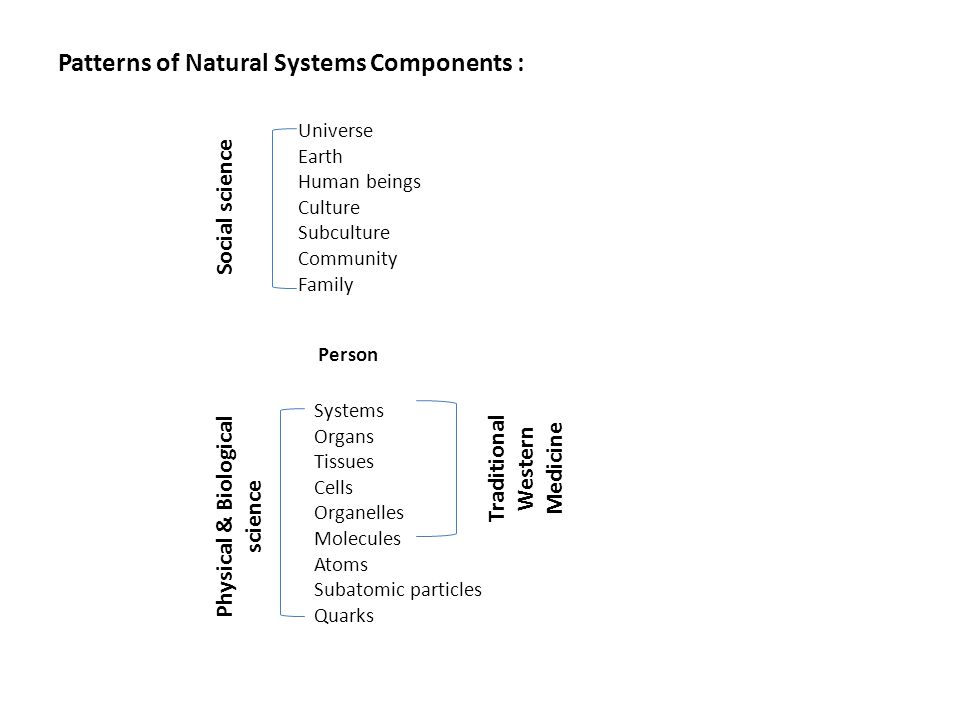Patterns of Natural Systems Components :