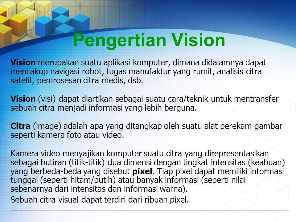 Pengertian Vision
