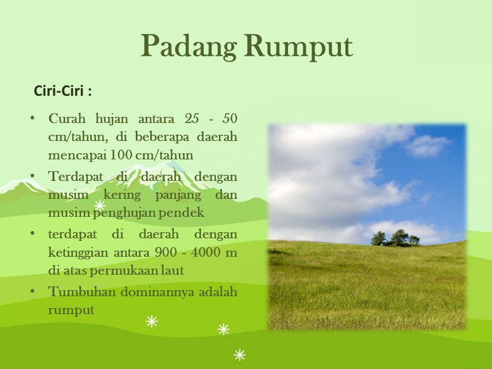 Padang Rumput Ciri-Ciri :