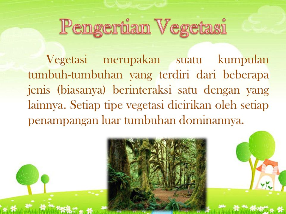 Pengertian Vegetasi