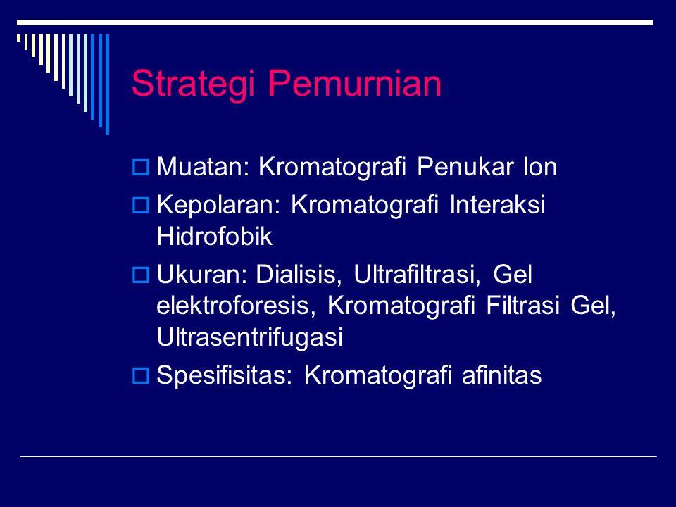 Strategi Pemurnian Muatan: Kromatografi Penukar Ion