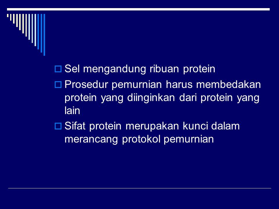 Sel mengandung ribuan protein