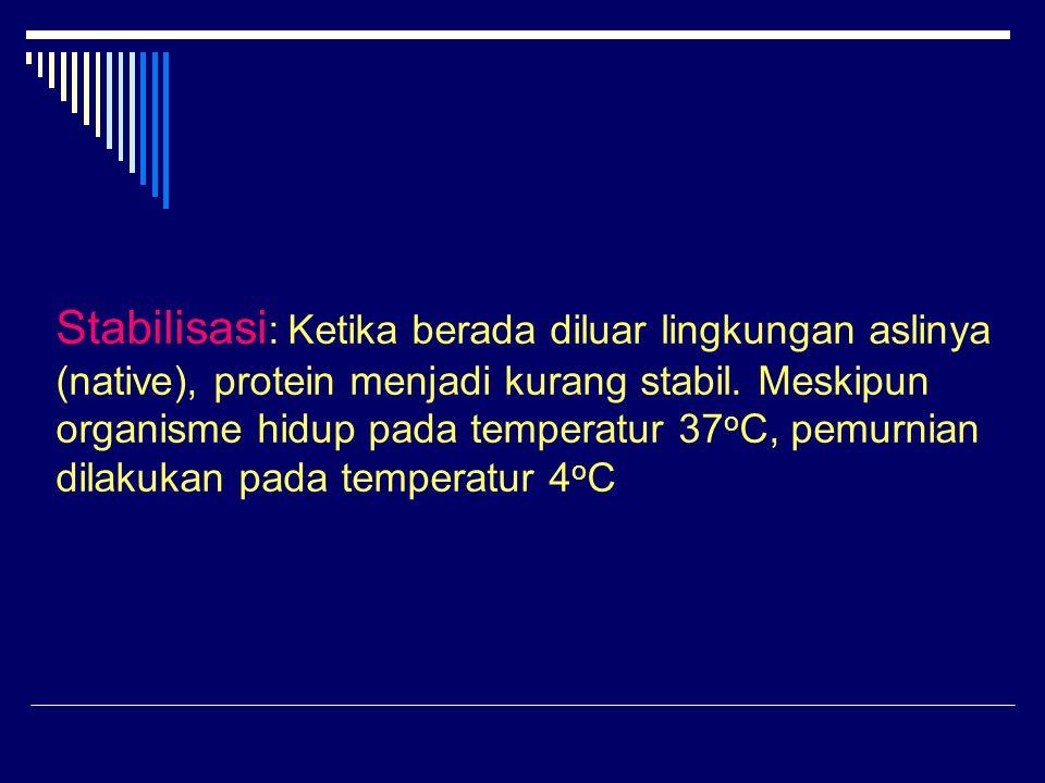 Stabilisasi: Ketika berada diluar lingkungan aslinya (native), protein menjadi kurang stabil.