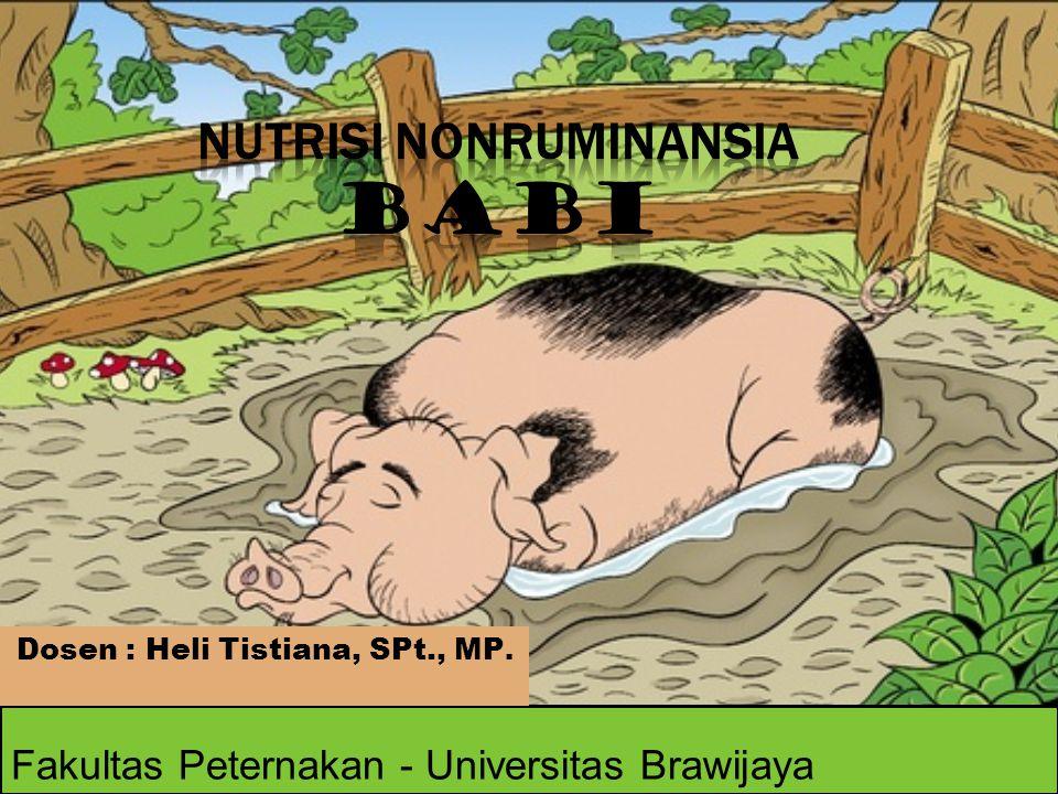 Nutrisi NonRuminansia Babi