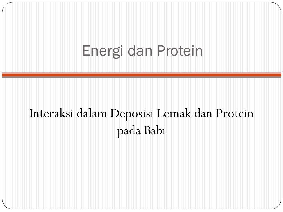 Interaksi dalam Deposisi Lemak dan Protein pada Babi