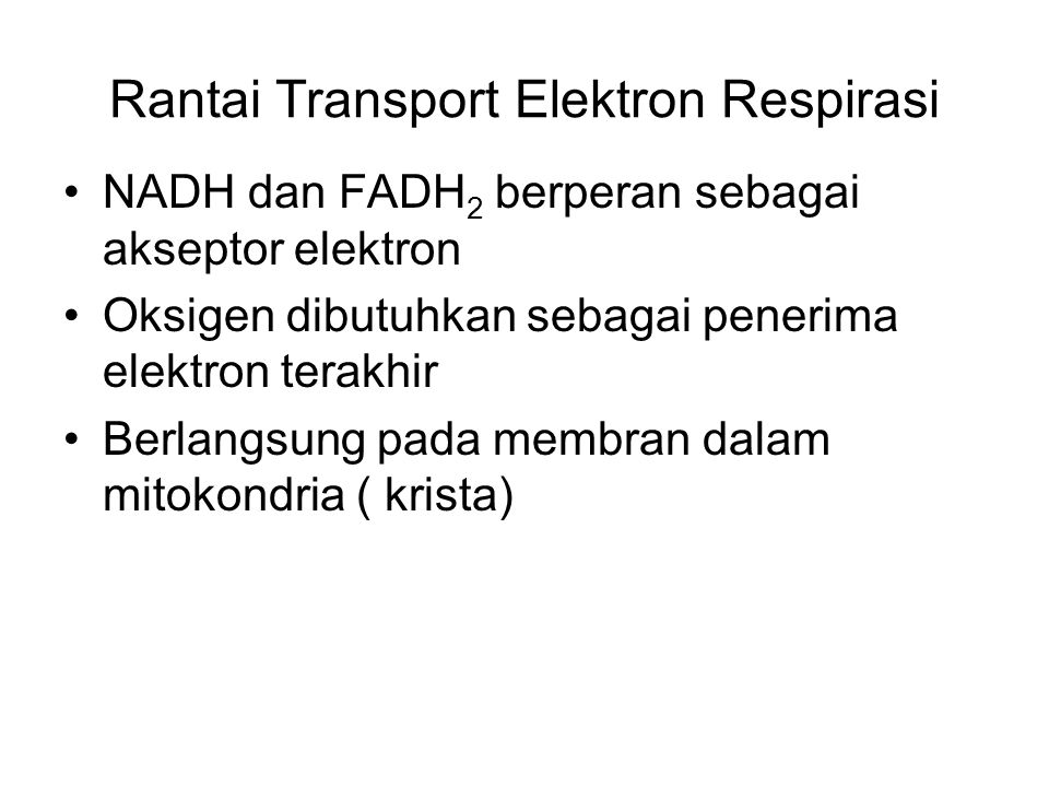 Rantai Transport Elektron Respirasi