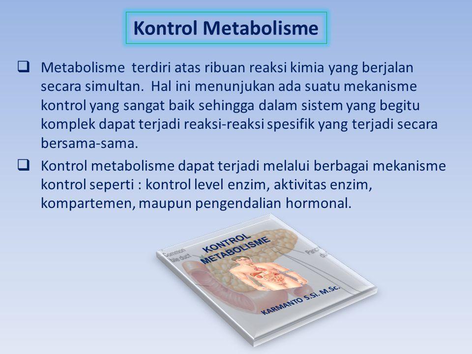 Kontrol Metabolisme