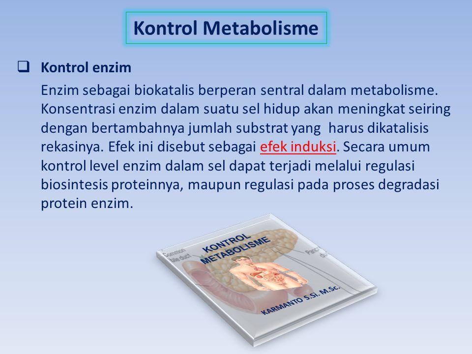 Kontrol Metabolisme Kontrol enzim