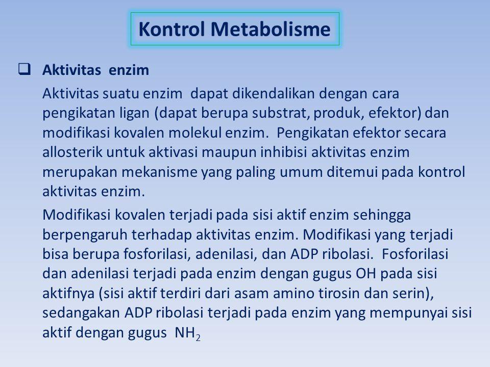 Kontrol Metabolisme Aktivitas enzim