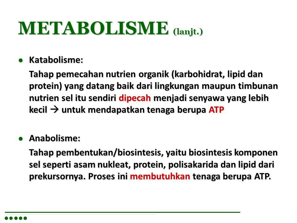 METABOLISME (lanjt.) Katabolisme: