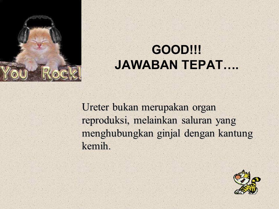 GOOD!!. JAWABAN TEPAT….