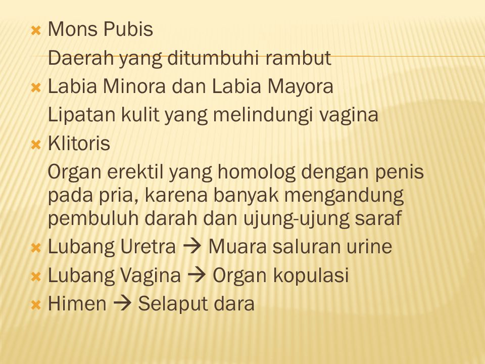 Mons Pubis Daerah yang ditumbuhi rambut. Labia Minora dan Labia Mayora. Lipatan kulit yang melindungi vagina.