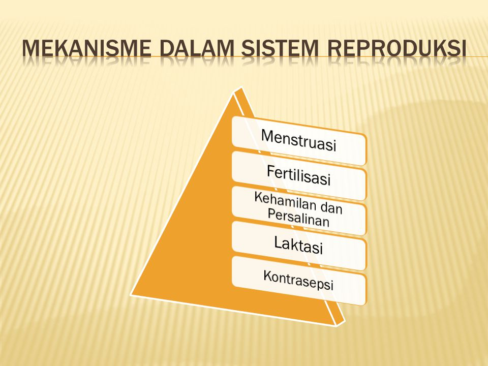 Mekanisme dalam sistem reproduksi
