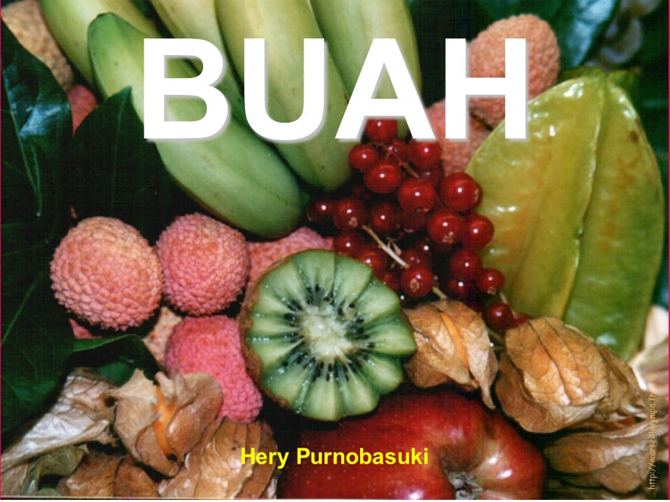 BUAH Hery Purnobasuki