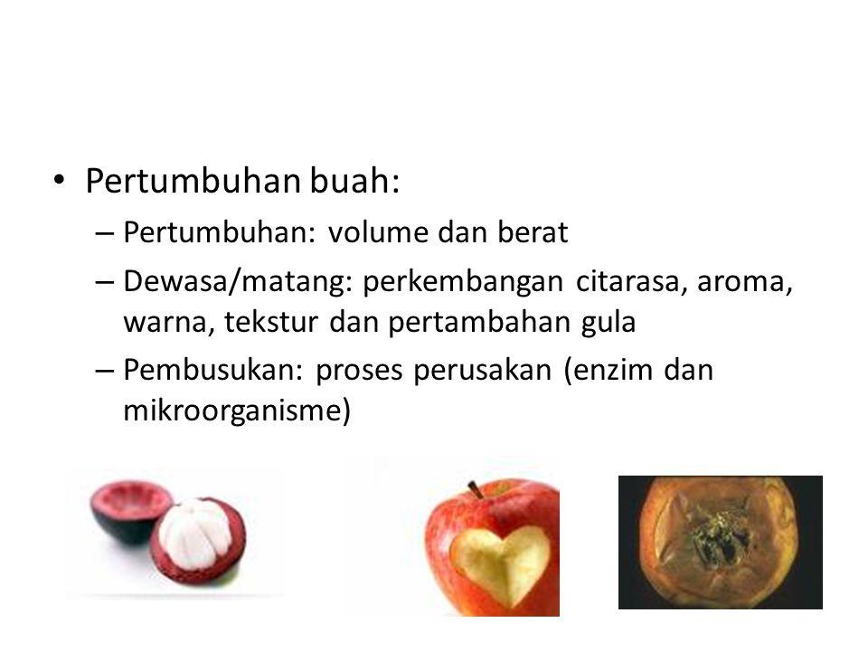 Pertumbuhan buah: Pertumbuhan: volume dan berat
