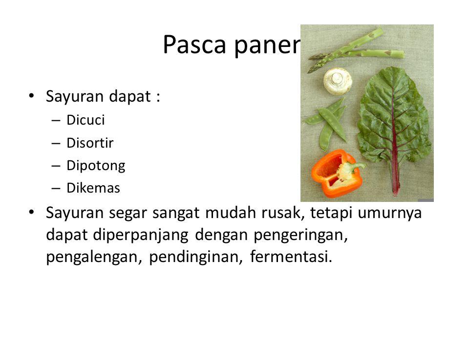 Pasca panen Sayuran dapat :