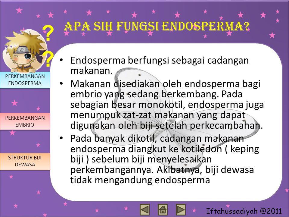 Apa sih fungsi endosperma