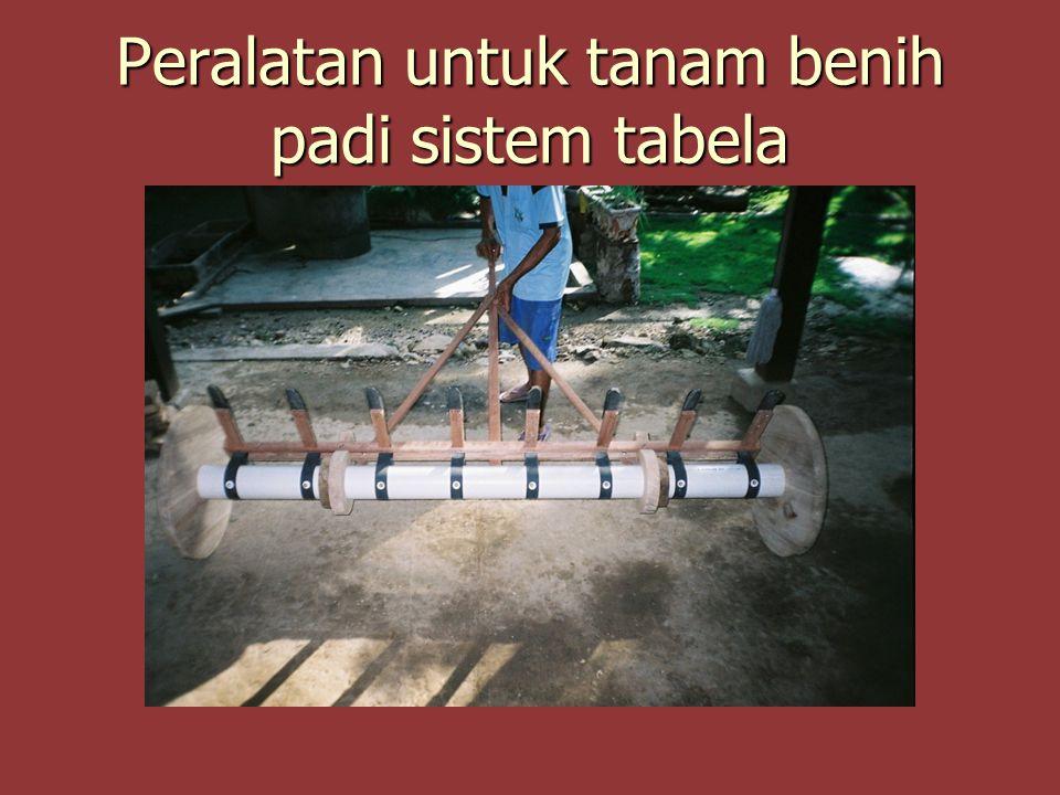 Peralatan untuk tanam benih padi sistem tabela