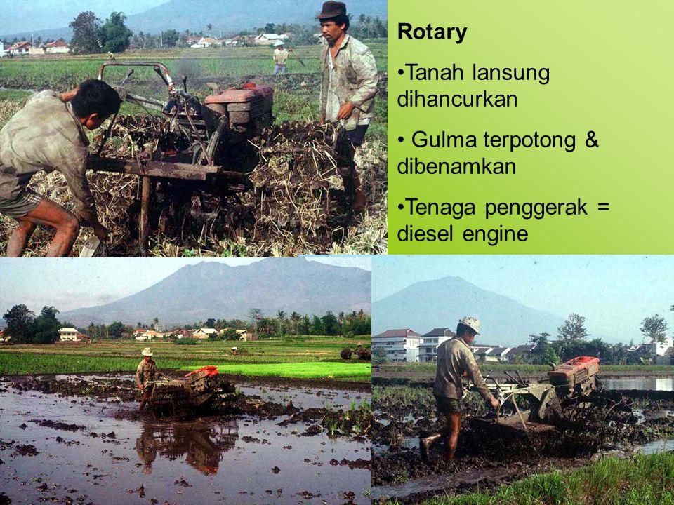 Rotary Tanah lansung dihancurkan. Gulma terpotong & dibenamkan.