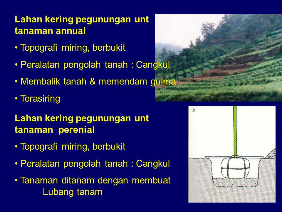 Lahan kering pegunungan unt tanaman annual