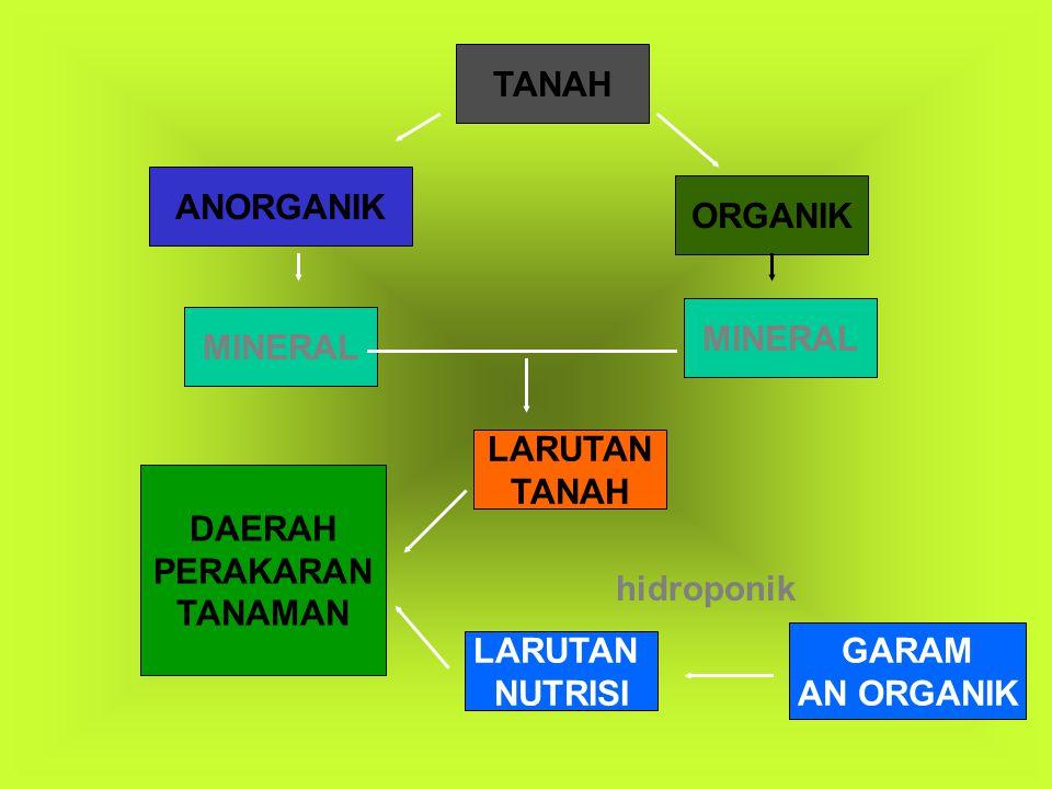 TANAH ANORGANIK. ORGANIK. MINERAL. MINERAL. LARUTAN. TANAH. DAERAH. PERAKARAN. TANAMAN. hidroponik.