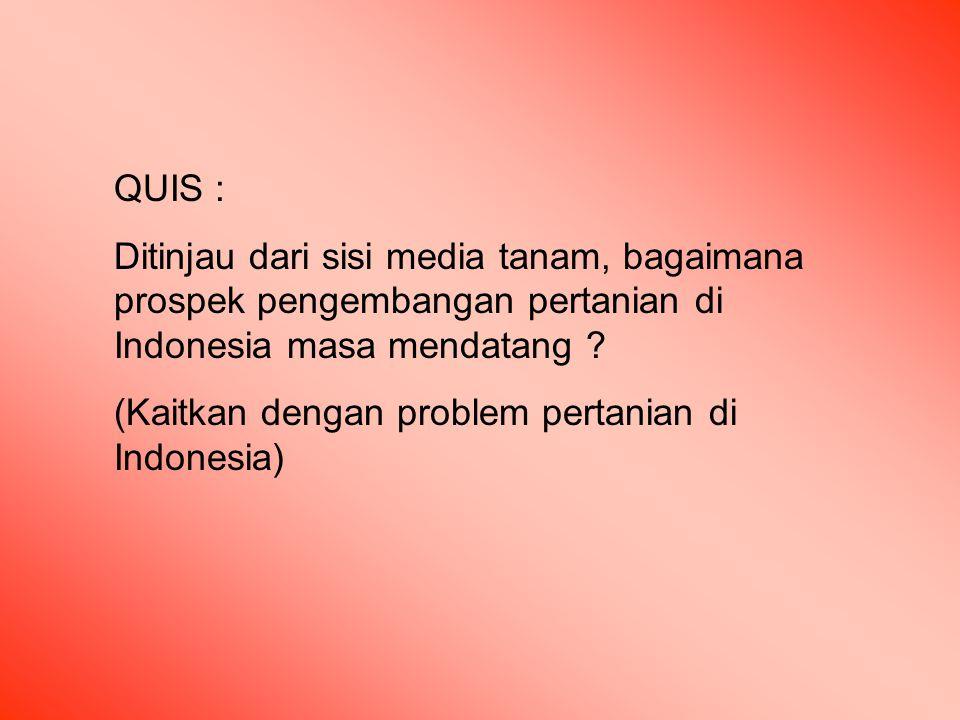 QUIS : Ditinjau dari sisi media tanam, bagaimana prospek pengembangan pertanian di Indonesia masa mendatang