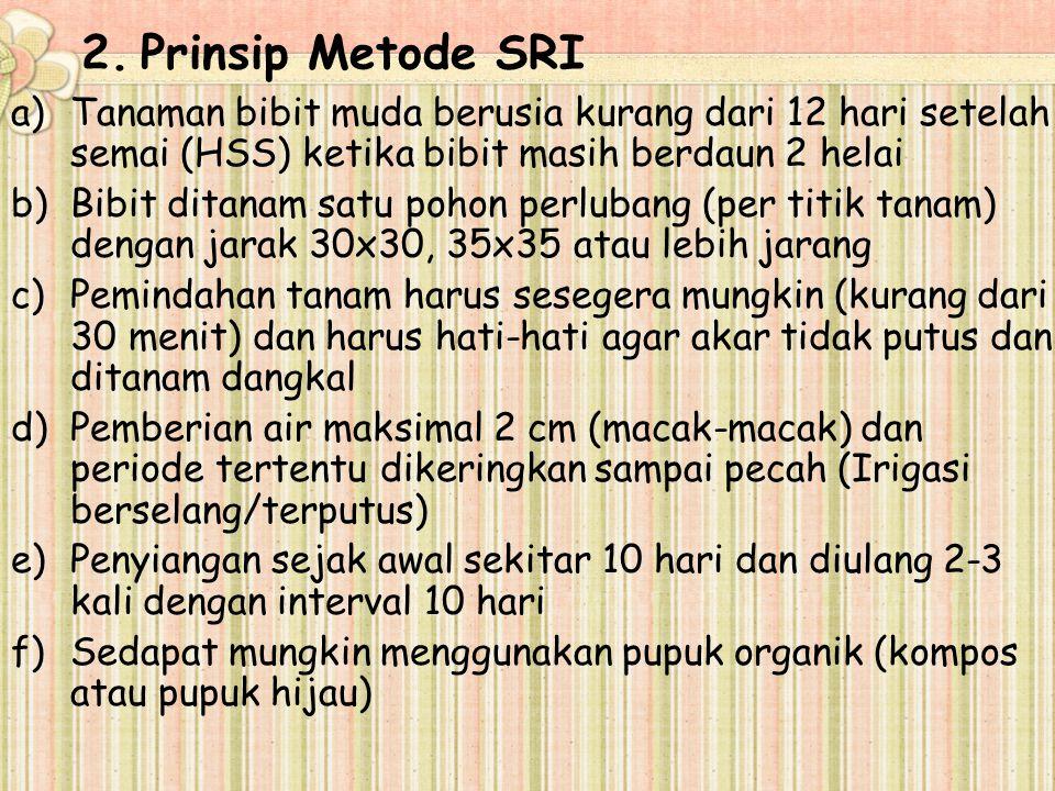Prinsip Metode SRI Tanaman bibit muda berusia kurang dari 12 hari setelah semai (HSS) ketika bibit masih berdaun 2 helai.