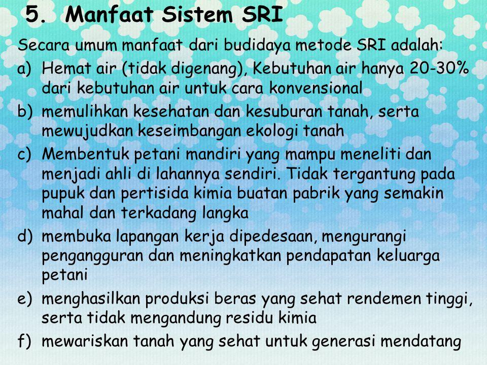Manfaat Sistem SRI Secara umum manfaat dari budidaya metode SRI adalah: