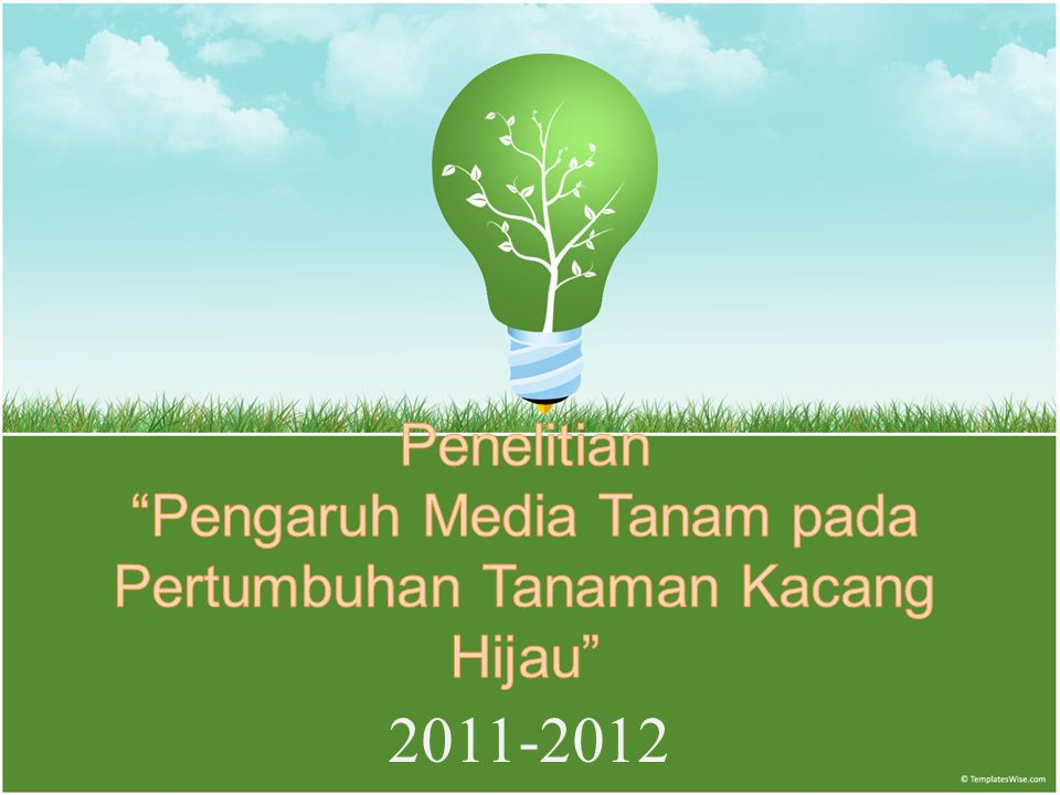 Penelitian Pengaruh Media Tanam pada Pertumbuhan Tanaman Kacang Hijau