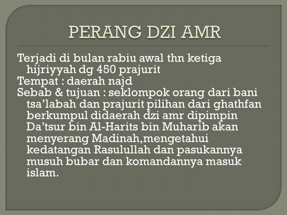 PERANG DZI AMR