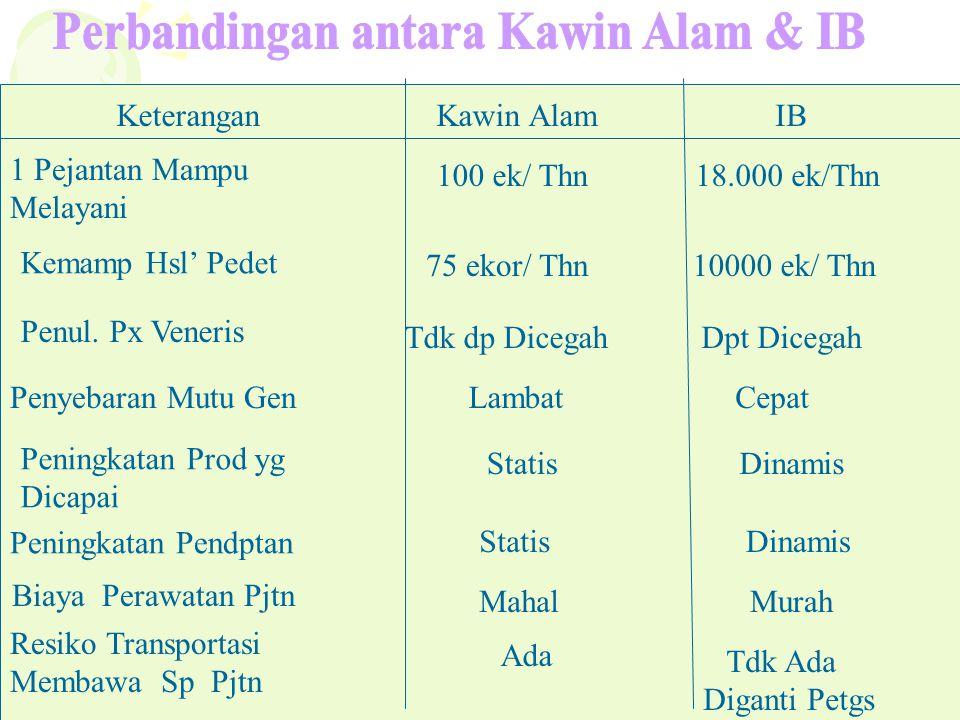 Perbandingan antara Kawin Alam & IB