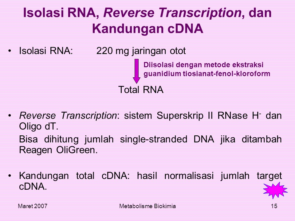 Isolasi RNA, Reverse Transcription, dan Kandungan cDNA