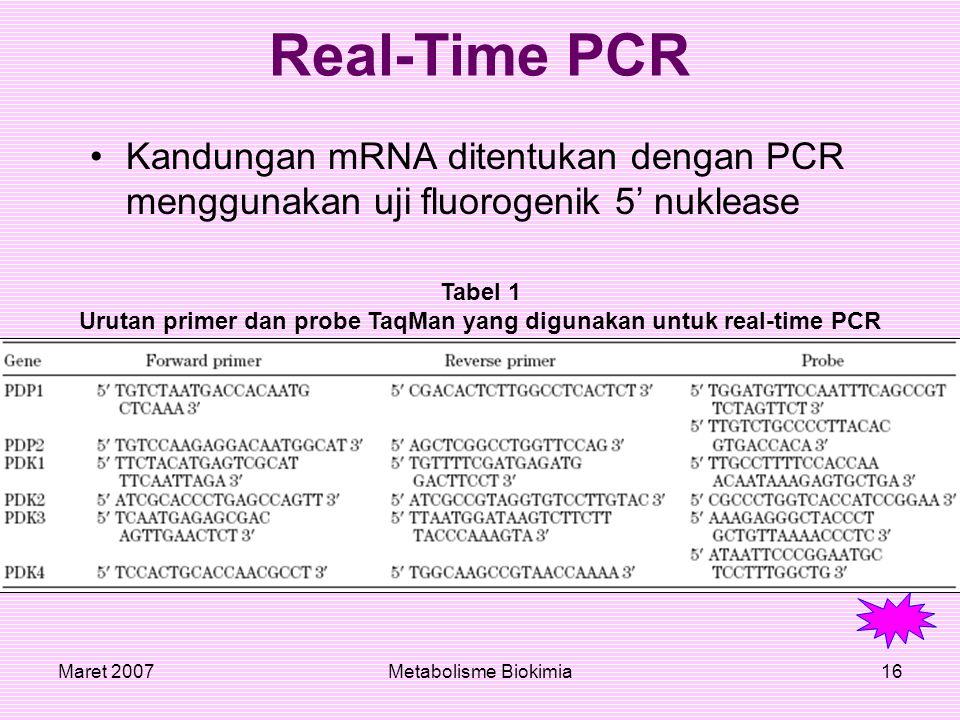 Urutan primer dan probe TaqMan yang digunakan untuk real-time PCR