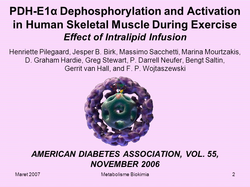 AMERICAN DIABETES ASSOCIATION, VOL. 55,