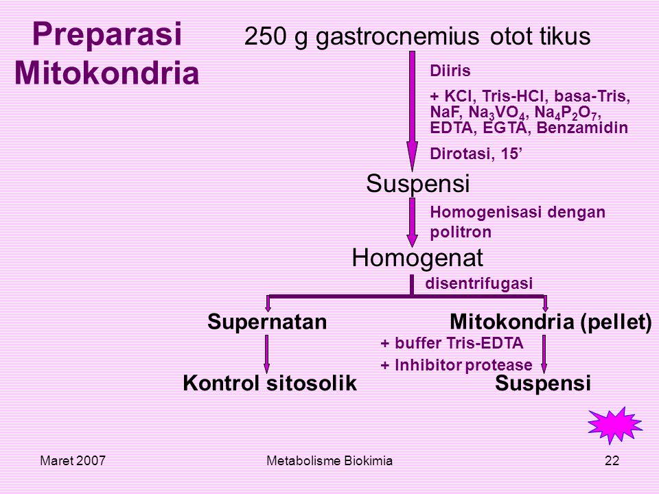 Preparasi Mitokondria