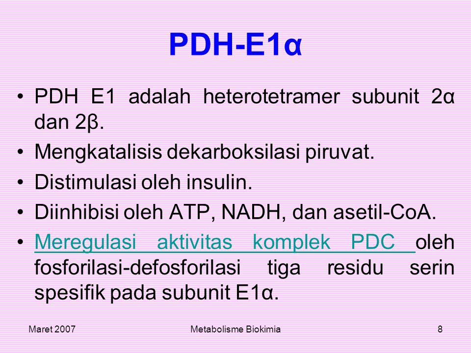 PDH-E1α PDH E1 adalah heterotetramer subunit 2α dan 2β.
