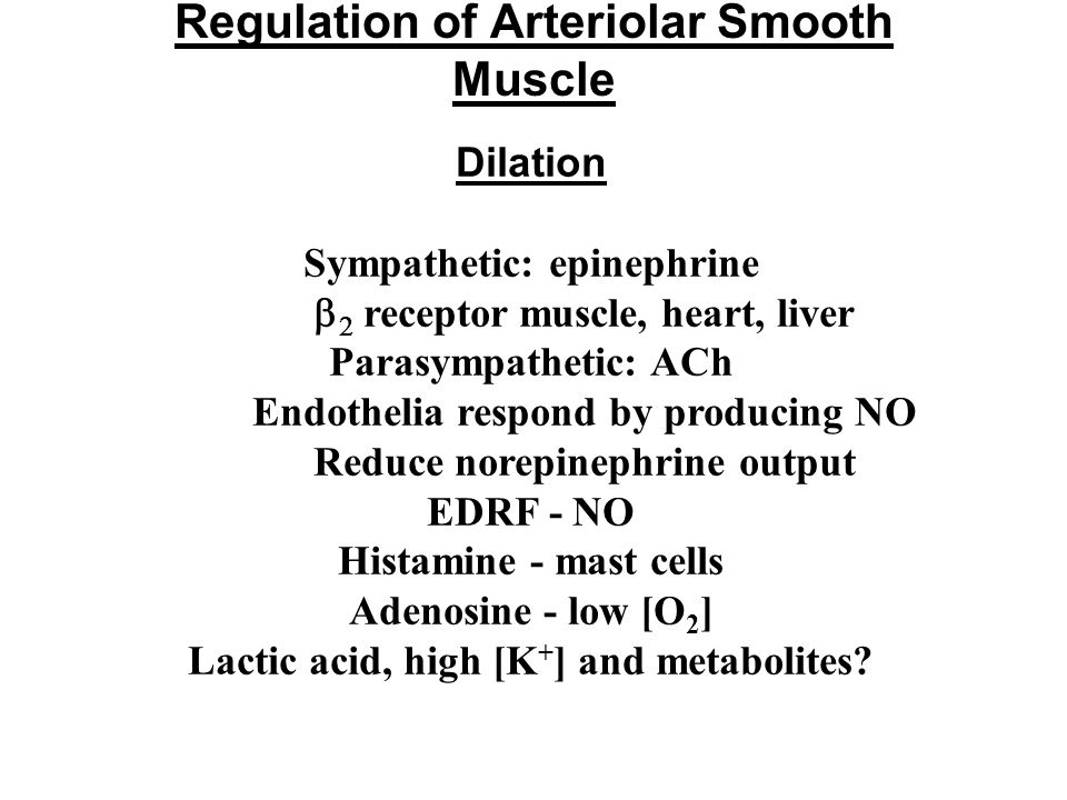 Regulation of Arteriolar Smooth Muscle