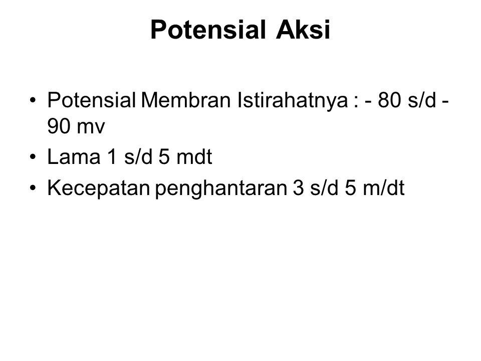 Potensial Aksi Potensial Membran Istirahatnya : - 80 s/d -90 mv