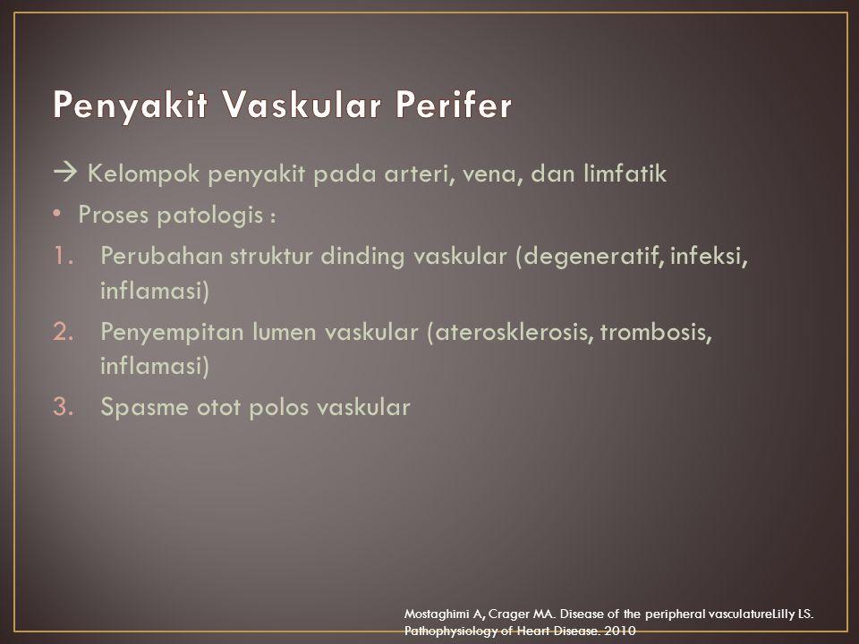 Penyakit Vaskular Perifer