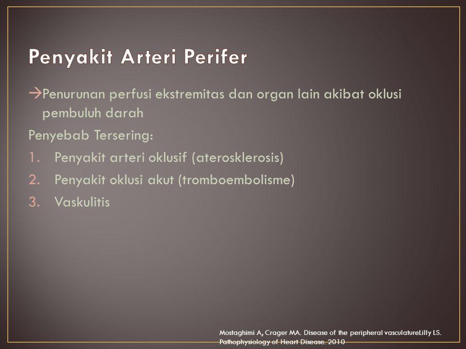 Penyakit Arteri Perifer