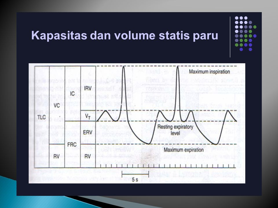 Kapasitas dan volume statis paru
