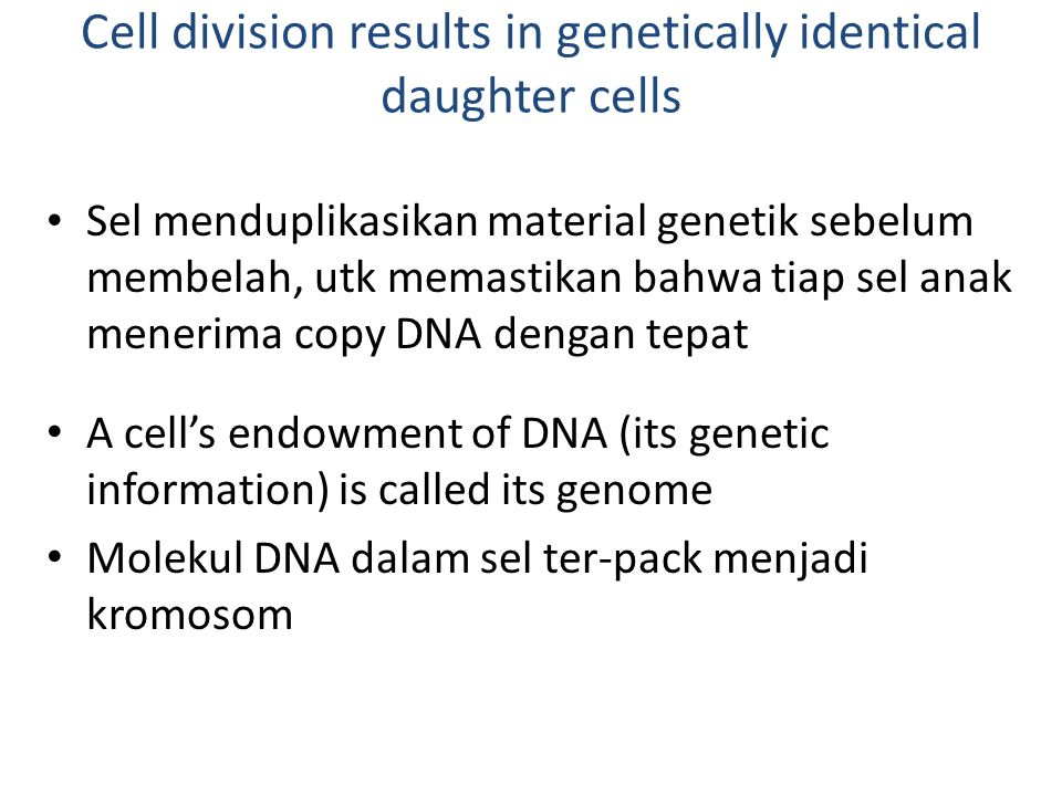Cell division results in genetically identical daughter cells
