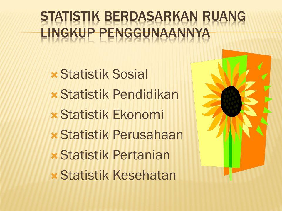 Statistik berdasarkan ruang lingkup penggunaannya