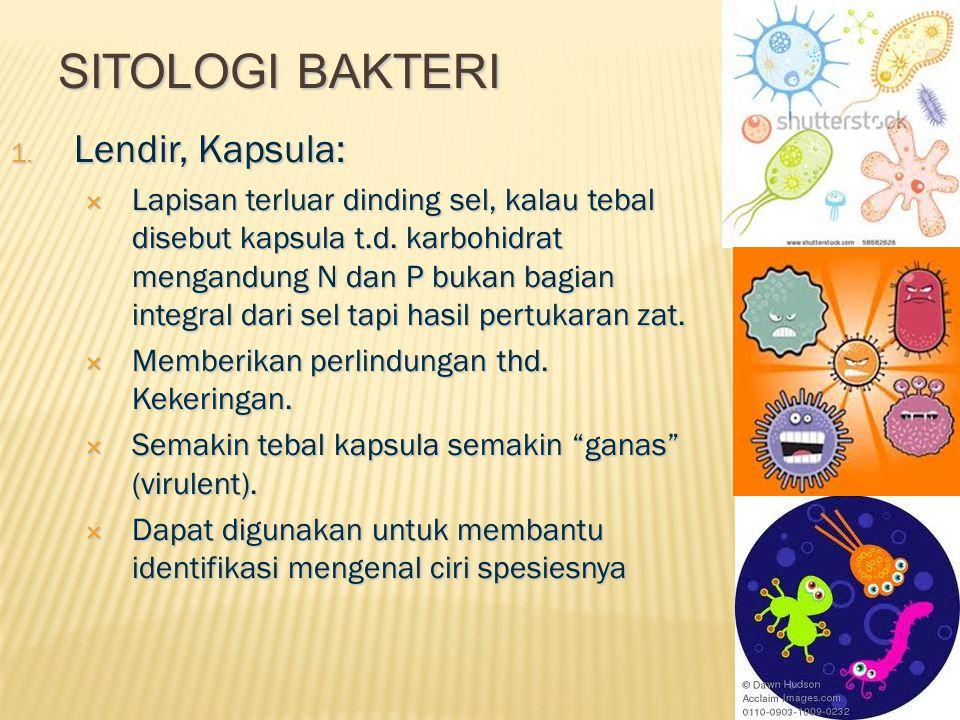 Sitologi bakteri Lendir, Kapsula: