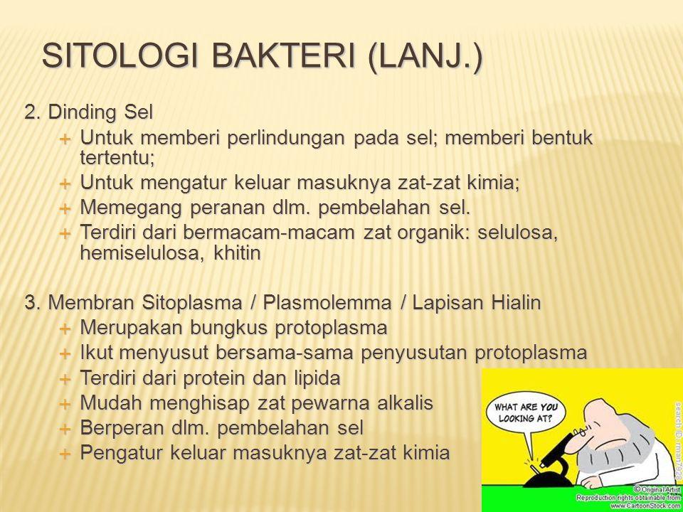 Sitologi bakteri (Lanj.)