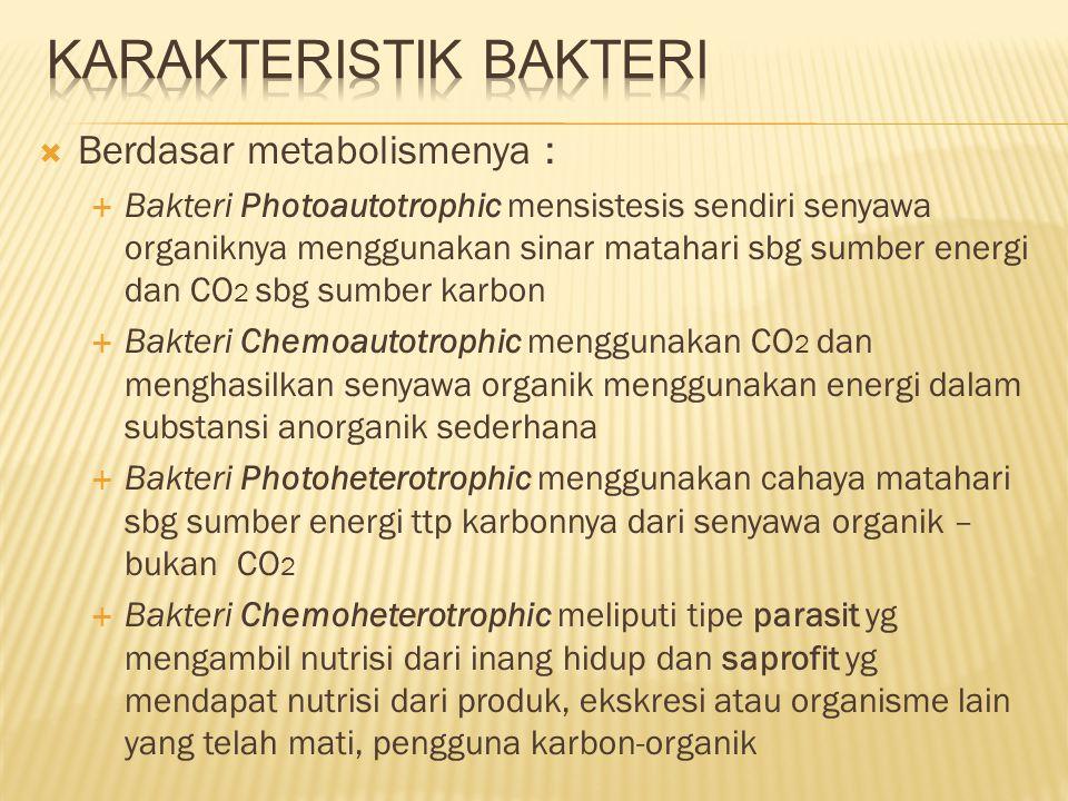Karakteristik Bakteri