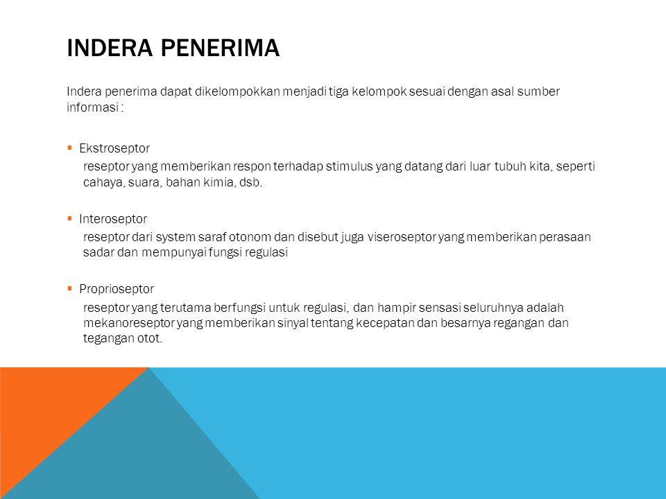 Indera penerima Indera penerima dapat dikelompokkan menjadi tiga kelompok sesuai dengan asal sumber informasi :