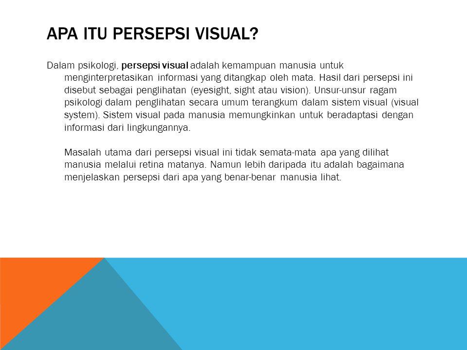 Apa itu Persepsi Visual