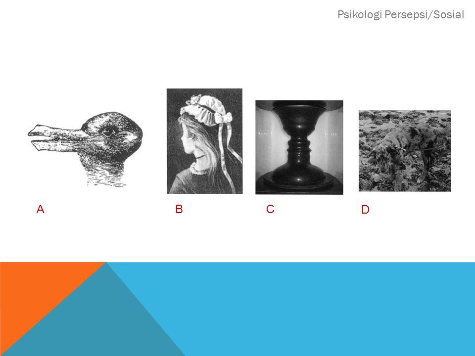 Psikologi Persepsi/Sosial