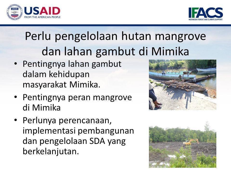 Perlu pengelolaan hutan mangrove dan lahan gambut di Mimika